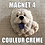 Thumbnail: Magnet Chow Chow
