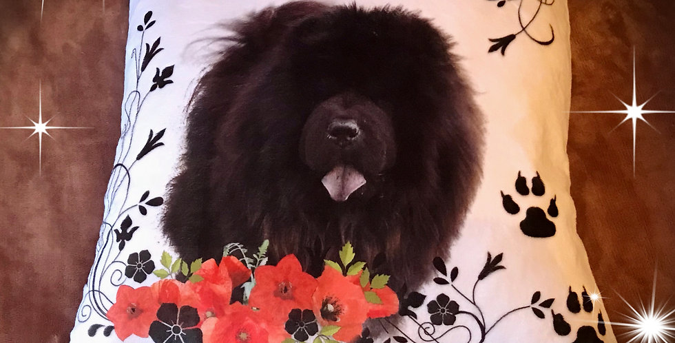 coussin blanc chow chow