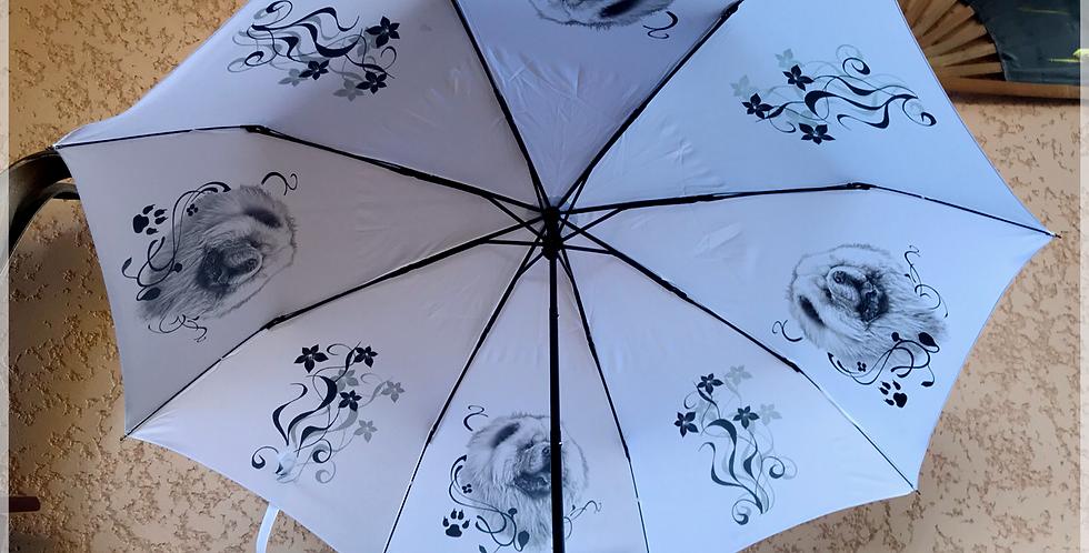 Parapluie pliable Chow Chow
