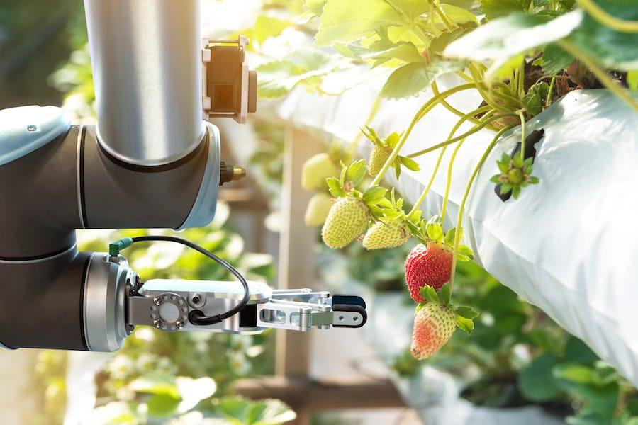smart farming robotics