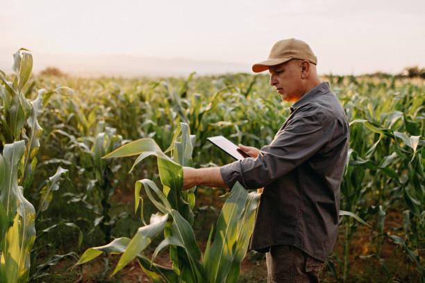 Smart farming work