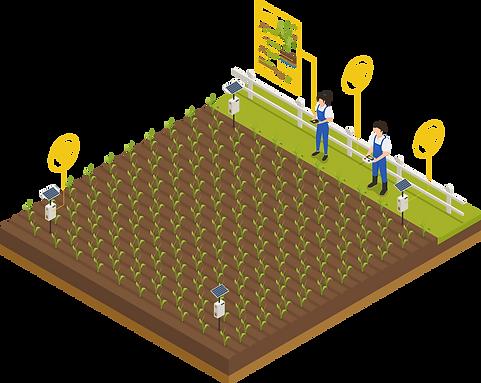 smart farming field