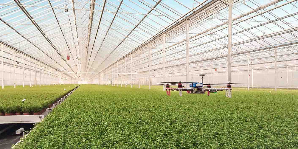 Drone in greenhouse