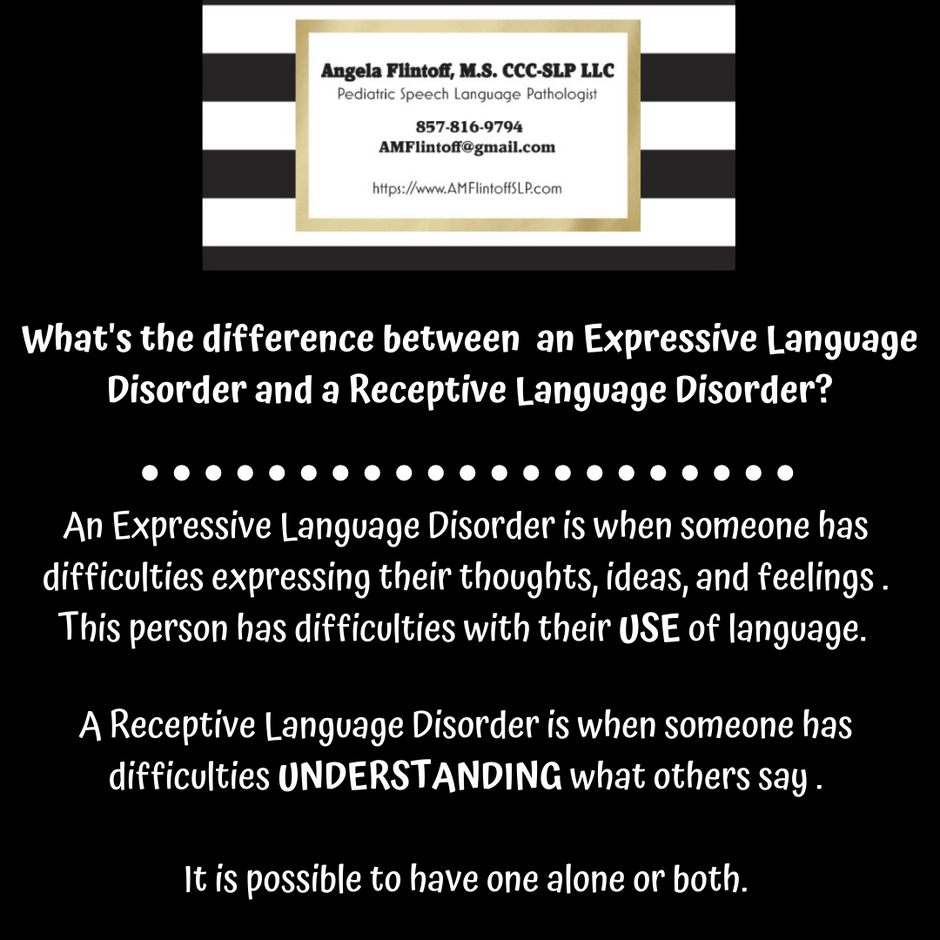 What's the difference between an Expressive and Receptive Language Disorder?