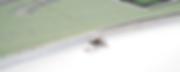 Schermafbeelding 2020-03-14 om 10.32.33.