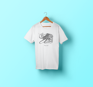 T-Shirt-Hanging-Mockup polvo fundo azul.