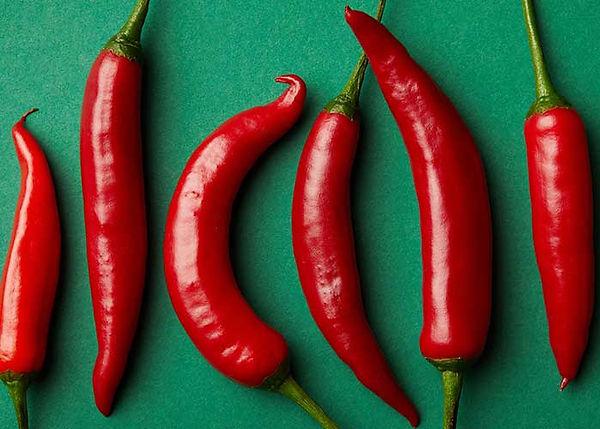 pimenta-jalapeño-murú-pimentas-2.jpg