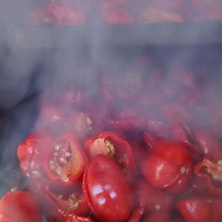 pimenta-habanero-5.jpg