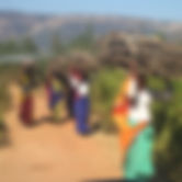 India_600.jpg