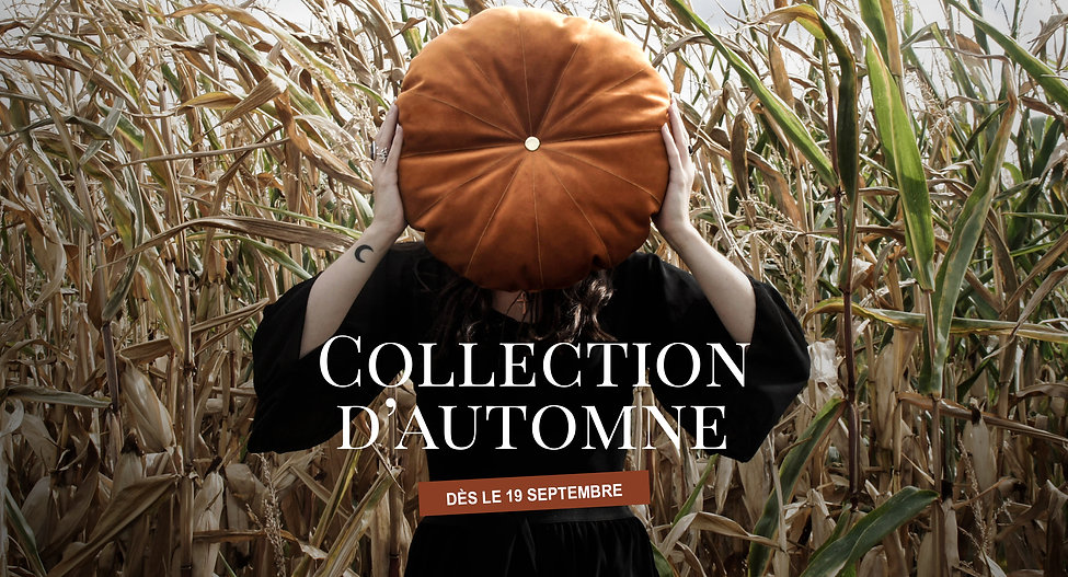 collection d'automne2.jpg