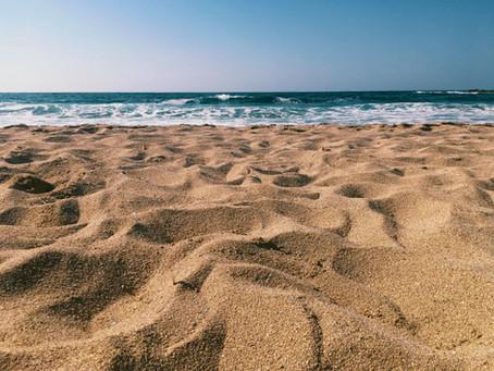 Sommer, die Verdauung & das Immunsystem
