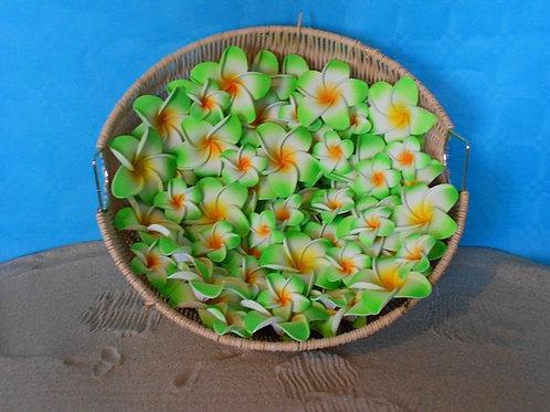 Lot de 10 fleurs de frangipanier en mousse