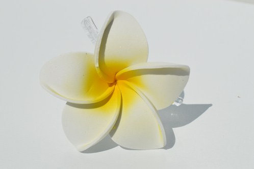 Grande fleur de frangipanier (pince)
