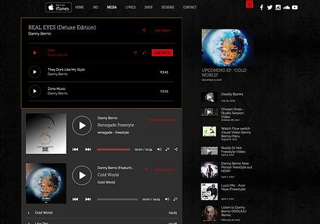 musical artist website