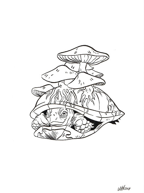 Mushroom turtle