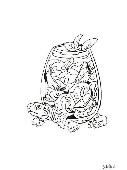 Mojito turtle