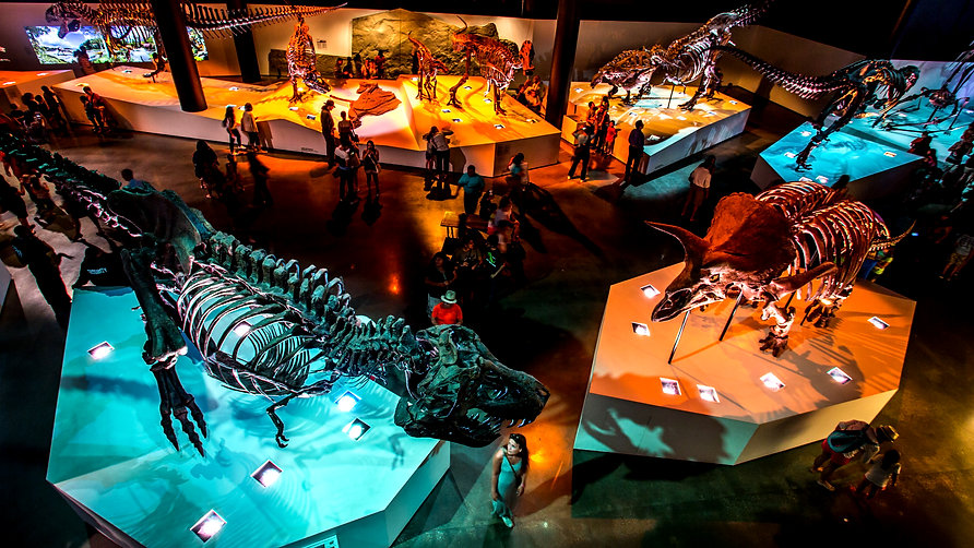 Houston Museum of Natural Science Paleo