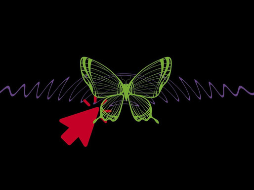 Numerical models, the butterfly effect and COVID-19