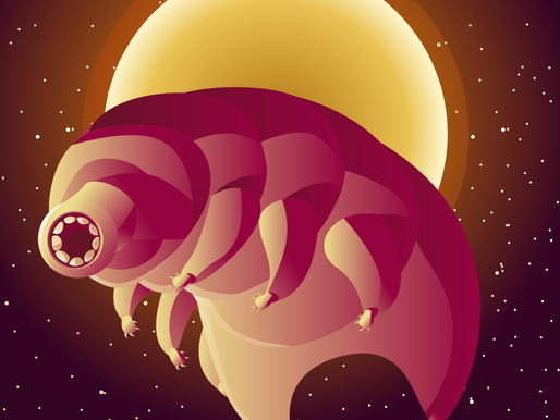 Aliens on Earth: the mystery of the tardigrade