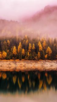 Autumn Reflection Mountain Lake Forest