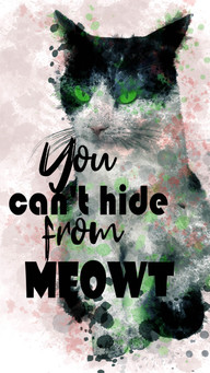 Lovely Cat Green Eyes And Lettering