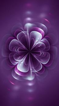 FlowerGlowingPetals.jpg