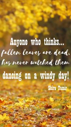 Fallen leaves dancing