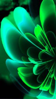 Green Shades Stylized Flower Half Corolla