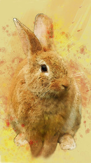 EasterBunnyWater 1080&1920.jpg