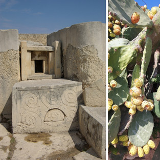 Tarxien Complex, Malta