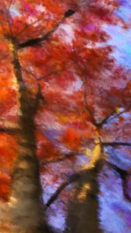 Colors Inspiration In  November Watercolor