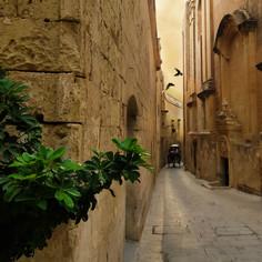 MedievalStreetWithCoach.jpg