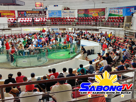 2019 Torneo Naked Heel 2 Stag Derby at Iloilo Coliseum (November 8, 2019)