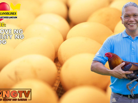 Pag-Improve ng Egg Hatchability with Doc Jun Cueto (September 26, 2021)