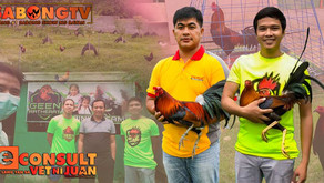 Mga Battle Crosses ng Geen Arthheart Gamefarm sa Vet Ni Juan (October 31, 2021)