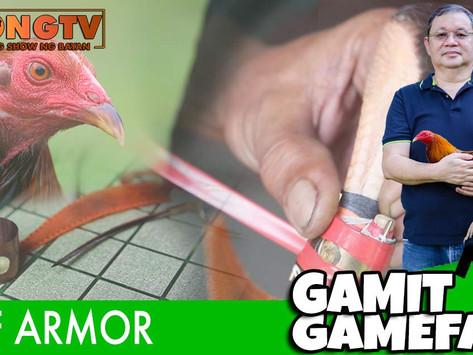 Gamit Gamefarm Feature on Gaff Armor (September 5, 2021)