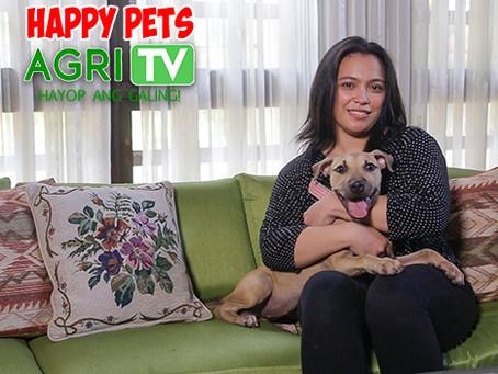 Happy Pets (May 3, 2020)