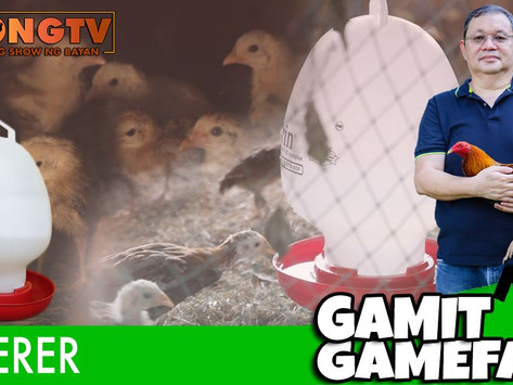 Gamit Gamefarm Feature on Waterer (October 10, 2021)