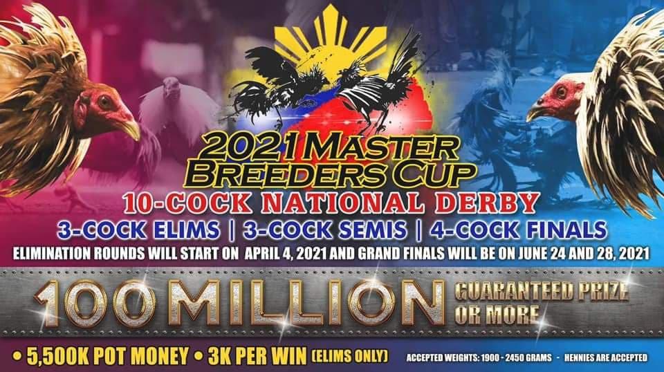 sabong, cockfighting, sabongtv, gamefowl, gamefarm, sabong philippines, cockfight, gamefarm supplies, sabong pitmasters, master breeders cup, sabong derby