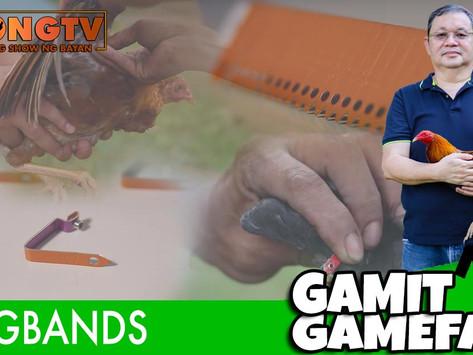 Wingbands Feature sa Gamit Gamefarm (September 12, 2021)