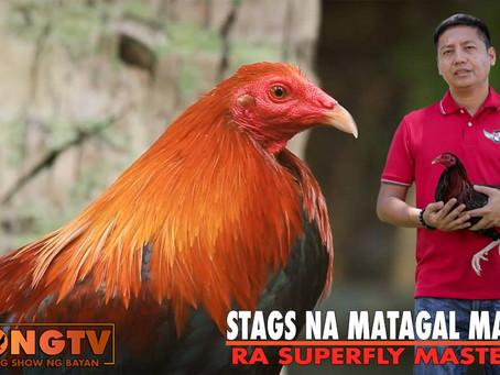 Stags na Matagal Maglaban with Atty. Ryan Abrenica (July 25, 2021)