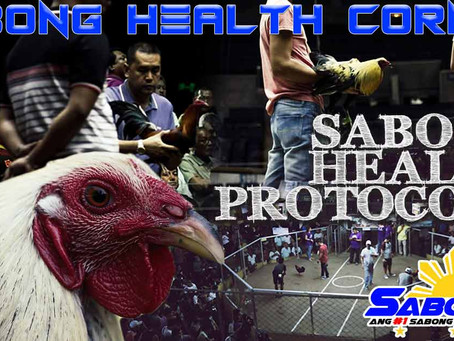 DILG Health Protocols sa Pagbabalik ng Sabong (November 8, 2020)