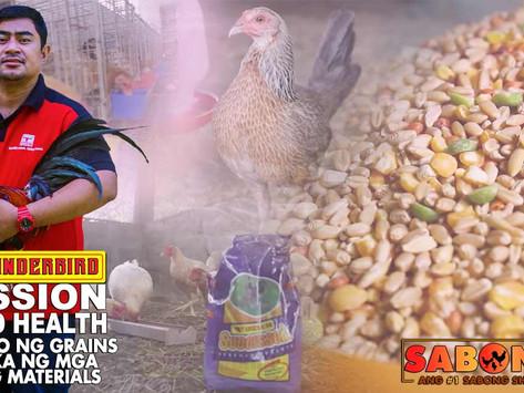 Paghalo ng Grains sa Patuka ng Breeding Materials with Thunderbird (September 19, 2021)