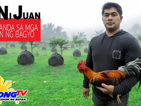 Proteksyon ng Manok Pangsabong sa Tag-Ulan with Doc Nilo (November 8, 2020)