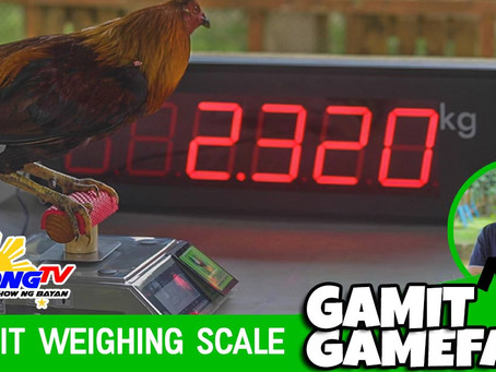 Sabong Cockpit Weighing Scale sa Gamit Gamefarm (February 28, 2021)