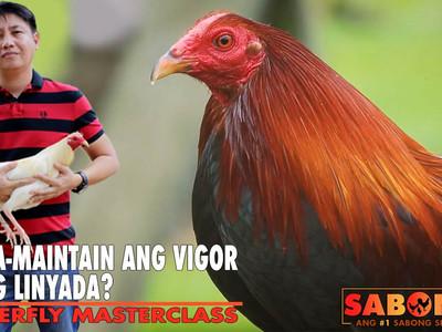 Pag-Maintain ng Vigor ng Linyada with Atty. Abrenica (August 1, 2021)