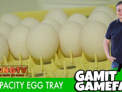 60 Capacity Egg Tray with Jong Daed (August 1, 2021)
