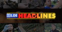 LDI Headlines