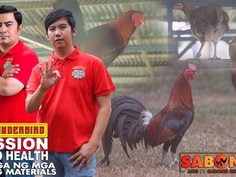 Pagpurga ng mga Breeding Materials with Thunderbird (September 5, 2021)