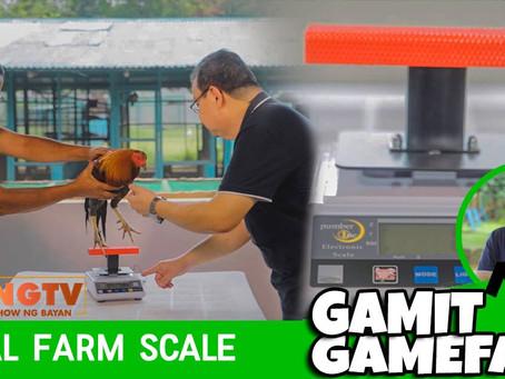 Digital Farm Scale sa Gamit Gamefarm (March 7, 2021)